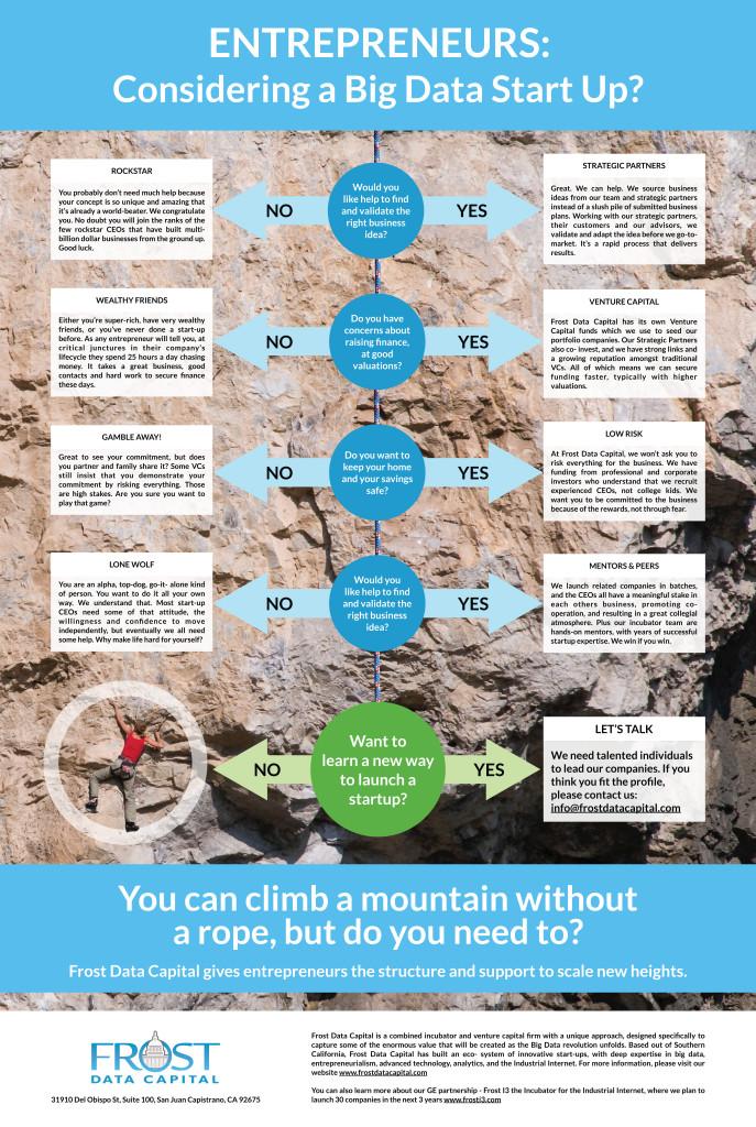 Frost Data Capital Entrepreneur Infographic